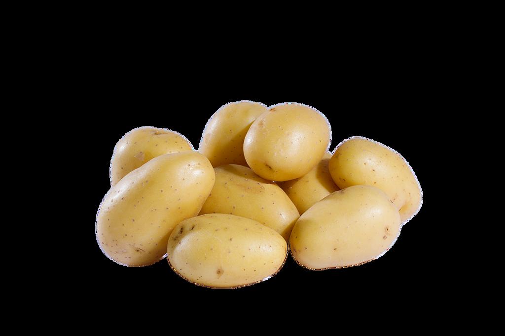 die kartoffel jazzy potato potato clip art free potato clip art black and white