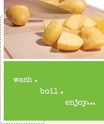 wash boil enjoy